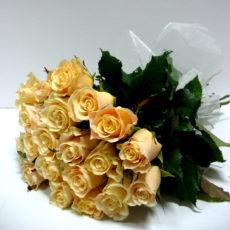 20 Kremowych Róż