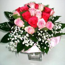 Różany Ogród 1