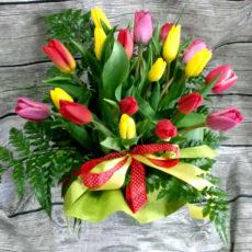 Bukiet 20 Tulipanów 1