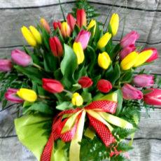 Bukiet 30 Tulipanów