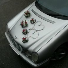 Dekoracja Samochodu 20