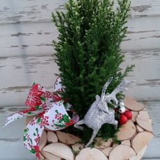 Stroik Świąteczny Blask