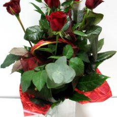 5 Długich Bordowych Róż