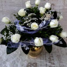 Białych Róż
