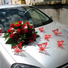 Dekoracja Samochodu 18