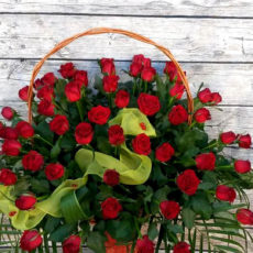 Kosz 65 Bordowych Róż